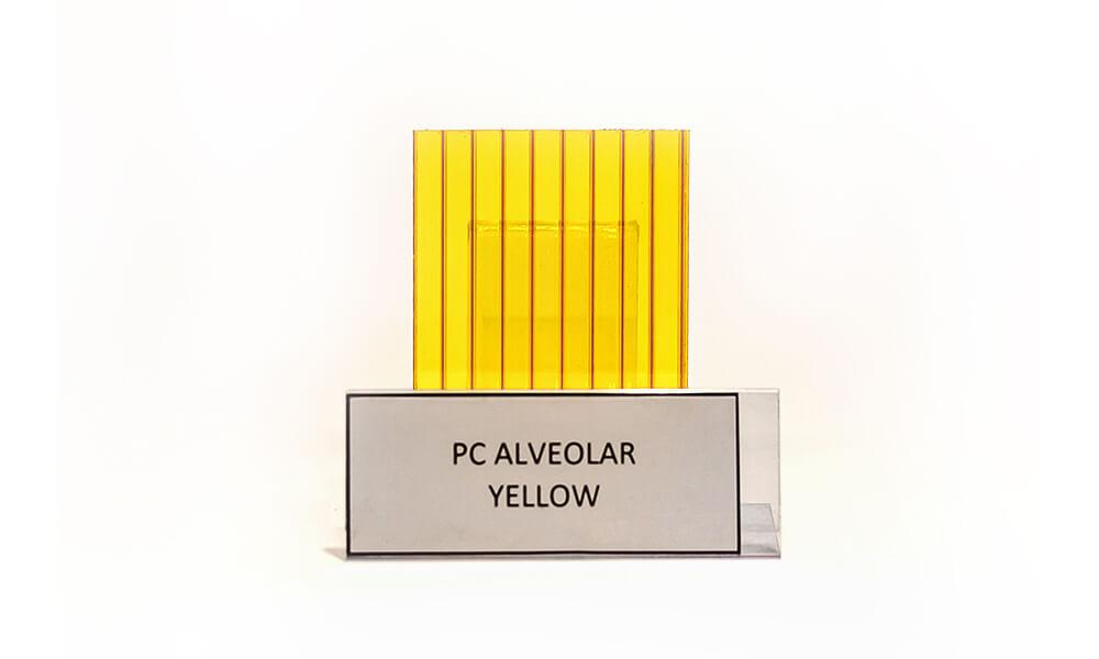alveolar (14)
